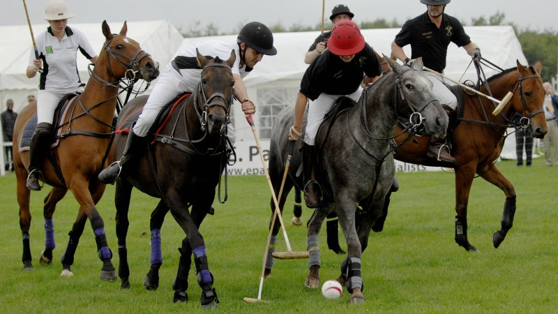Polo Match, Epworth Show