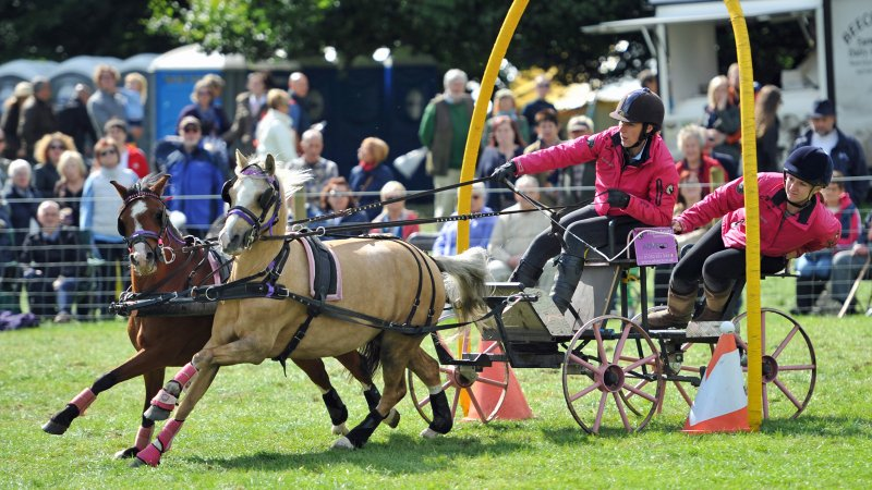 Scurry & Trials Driving, Chatsworth Country Fair